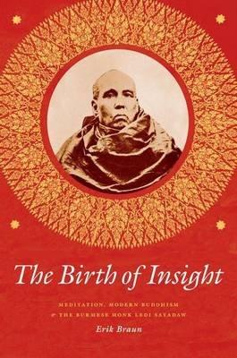 Birth of Insight (Electronic book text): Erik Braun