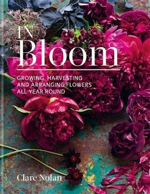 In Bloom - Growing, harvesting and arranging flowers all year round (Hardcover): Clare Nolan