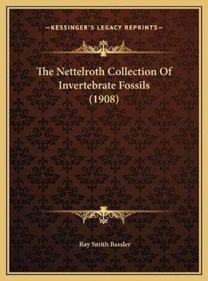 The Nettelroth Collection of Invertebrate Fossils (1908) the Nettelroth Collection of Invertebrate Fossils (1908) (Hardcover):...