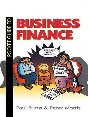 Pocket Guide to Business Finance (Electronic book text): Paul Burns, Peter Morris