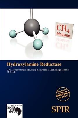 Hydroxylamine Reductase (Paperback): Antigone Fernande