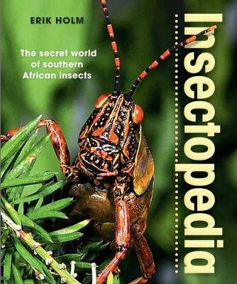 Insectopedia - The Secret World of Southern African Insects (Paperback, 2nd Revised Edition): Erik Holm