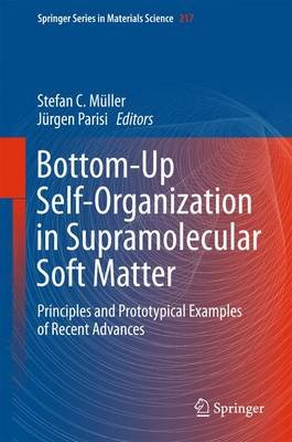 Bottom-Up Self-Organization in Supramolecular Soft Matter - Principles and Prototypical Examples of Recent Advances (Hardcover,...
