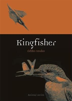 Kingfisher (Paperback, Annotated edition): Ildiko Szabo