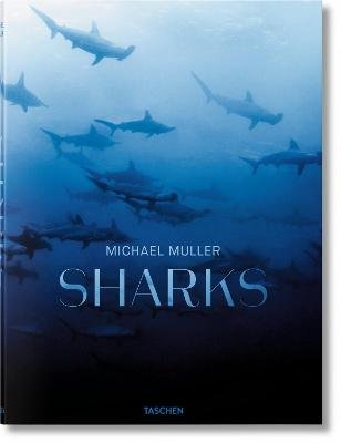 Michael Muller. Sharks (Hardcover):