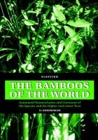 The Bamboos of the World - Annotated Nomenclature and Literature of the Species and the Higher and Lower Taxa (Hardcover, 1st...