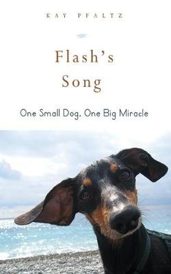 Flash's Song - How One Small Dog Turned into One Big Miracle (Hardcover): Kay Pfaltz