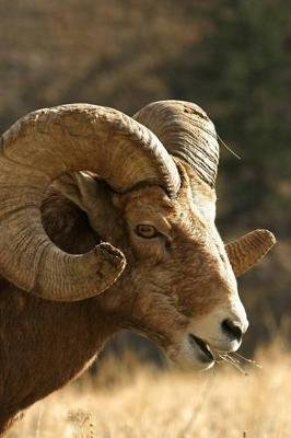 Bighorn Sheep RAM Portrait Journal - 150 Page Lined Notebook/Diary (Paperback): Cool Image
