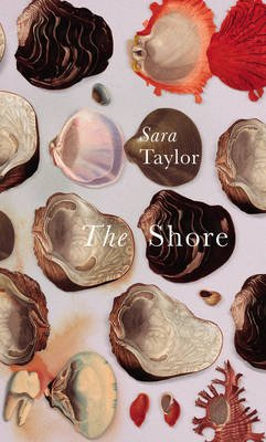 The Shore (Paperback): Sara Taylor