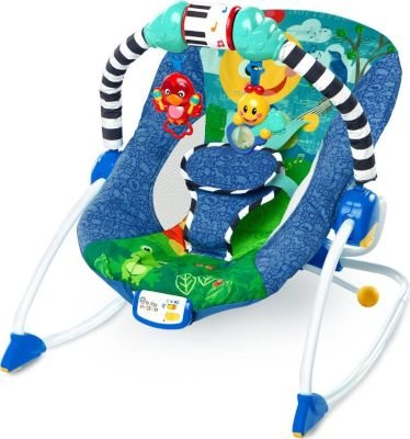 Baby Einstein Infant To Toddler Rocker: