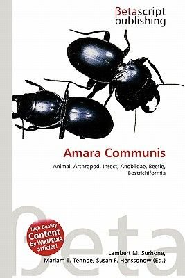 Amara Communis (Paperback): Lambert M. Surhone, Mariam T. Tennoe, Susan F. Henssonow