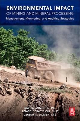 Environmental Impact of Mining and Mineral Processing - Management, Monitoring, and Auditing Strategies (Paperback): Ravi Jain