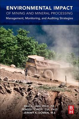 Environmental Impact of Mining and Mineral Processing - Management, Monitoring, and Auditing Strategies (Paperback): Ravi Jain