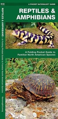 Reptiles & Amphibians - A Folding Pocket Guide to Familiar North American Species (Pamphlet): James Kavanagh