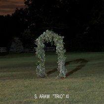 Sun Araw 'Trio' XI - Gazebo Effect (Vinyl record): Sun Araw 'Trio' XI