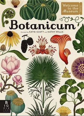 Botanicum - Welcome to the Museum (Hardcover): Kathy Willis