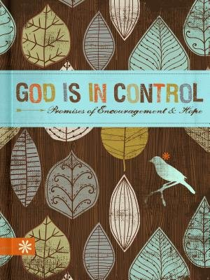 God Is in Control - Promises of Encouragement & Hope (Hardcover): Ellie Claire