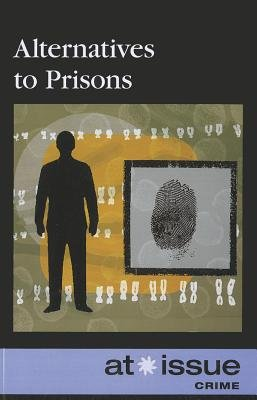 Alternatives to Prisons (Paperback, 2nd ed.): Ronnie D. Lankford