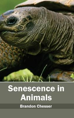 Senescence in Animals (Hardcover): Brandon Chesser