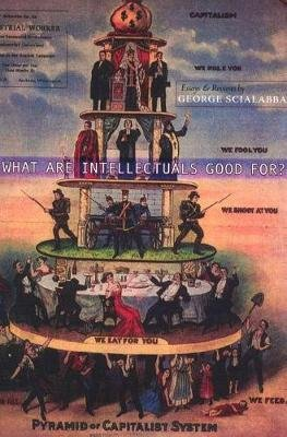 What Are Intellectuals Good For? (Paperback): George Scialabba
