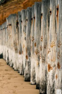 Old Breakwater Poles at the Beach - Blank 150 Page Lined Journal for Your Thoughts, Ideas, and Inspiration (Paperback): Unique...
