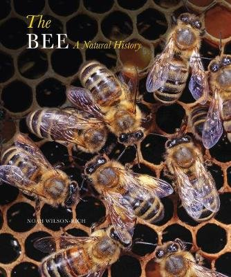 The Bee - A Natural History (Paperback): Noah Wilson-Rich