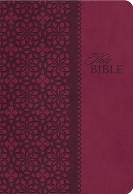 KJV, End-of-Verse Reference Bible, Personal Size, Giant Print, Imitation Leather, Burgundy, Indexed, Red Letter Edition...
