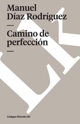 Camino de Perfeccion (Spanish, Paperback): Manuel Diaz Rodriguez