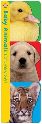 Chunky Pack: Baby Animals Chunky Set - Pets, Farm, and Wild Animals (Board book): Roger Priddy