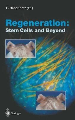 Regeneration - Stem Cells and Beyond (Paperback): Ellen Heber-Katz