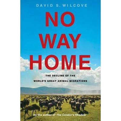 No Way Home - The Decline of the World's Great Animal Migrations (Standard format, CD): David Wilcove