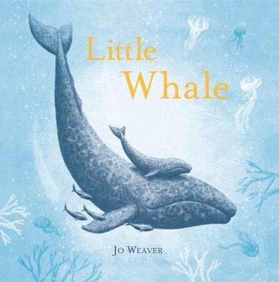 Little Whale (Hardcover): Jo Weaver