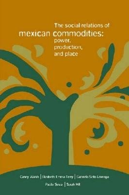 The Social Relations of Mexican Commodities - Power, Production, and Place (Paperback, illustrated Edition): Casey Walsh,...