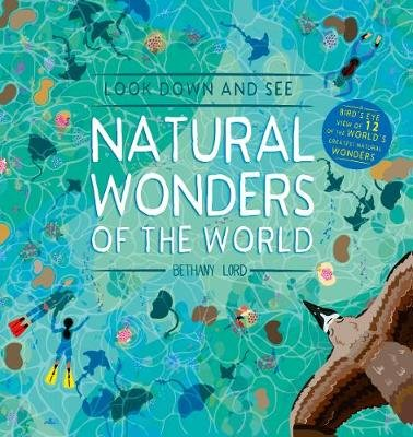 Look Down and See Natural Wonders of the World (Hardcover): Bethany Lord