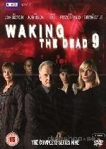 Waking The Dead - Season 9 (DVD, Boxed set): Trevor Eve, Sue