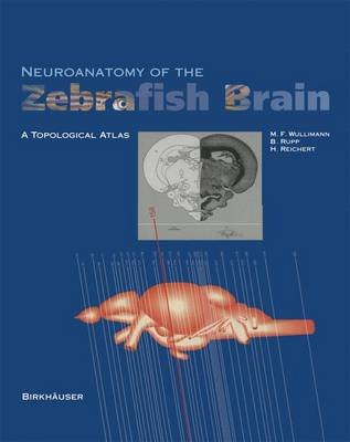 Neuroanatomy of the Zebrafish Brain - A Topological Atlas (Hardcover): M.F. Wulliman, Barbara Rupp, Heinrich Reichert