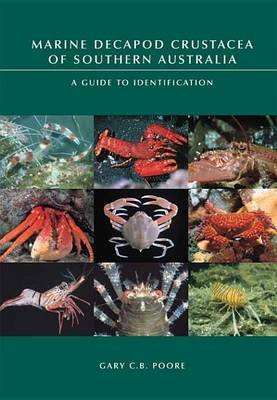 Marine Decapod Crustacea of Southern Australia - A Guide to Identification (Electronic book text): Gary C. B. Poore, Shane T...