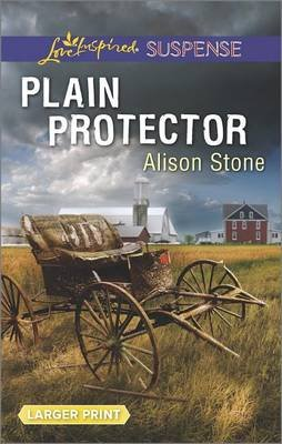 Plain Protector (Large print, Paperback, large type edition): Alison Stone