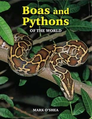 Boas and Pythons of the World (Paperback, 2nd Revised edition): Mark O'Shea