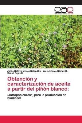 Obtencion y Caracterizacion de Aceite a Partir del Pinon Blanco (Spanish, Paperback): Virues Delgadillo Jorge Octavio, Gomez G....