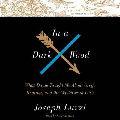 In a Dark Wood - What Dante Taught Me about Grief, Healing, and the Mysteries of Love (Downloadable audio file): Joseph Luzzi