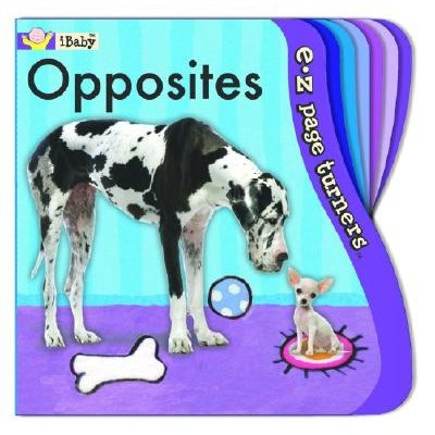 Opposites (Board book): Liza Page