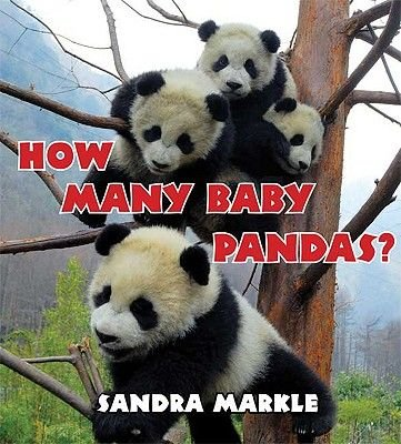 How Many Baby Pandas? (Hardcover): Sandra Markle