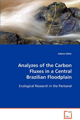 Analyzes of the Carbon Fluxes in a Central Brazilian Floodplain (Paperback): Sabine Sibler