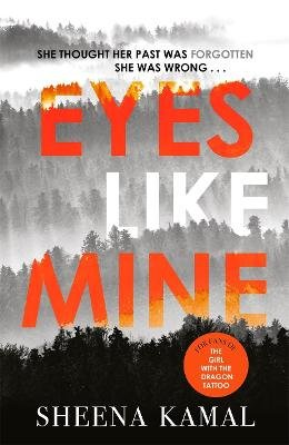 Eyes Like Mine - 'Utterly compelling . . . Will stay with you for a long, long time' Jeffery Deaver (Paperback):...
