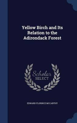 Yellow Birch and Its Relation to the Adirondack Forest (Hardcover): Edward Florince McCarthy