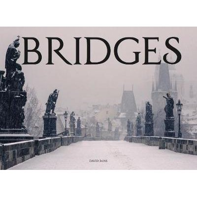Bridges (Hardcover): David Ross