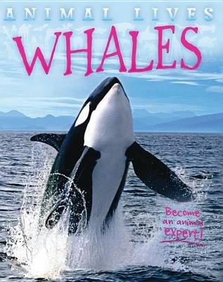 Whales (Hardcover): Sally Morgan