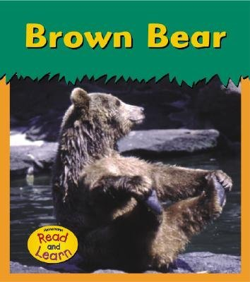 Brown Bear (Paperback): Patricia Whitehouse