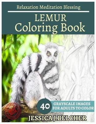 Lemur Coloring Book for Adults Relaxation Meditation Blessing - Animal Coloring Book, Sketch Books, Relaxation Meditation,...